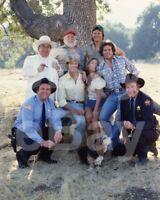 The Dukes of Hazzard (TV) Cast 10x8 Photo