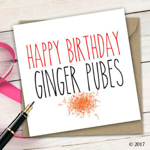 Birthday Card Funny Cheeky Adult Humour Rude Quirky Insult Ginger Mate B18