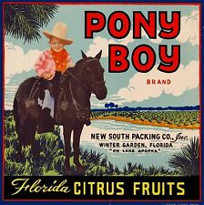Winter Garden Florida Pony Boy Brand Orange Citrus Fruit Crate Label Art Print
