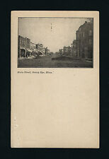 Sleepy Eye Minnesota MN c1905 UDB PC, Main Street Stores & Business District