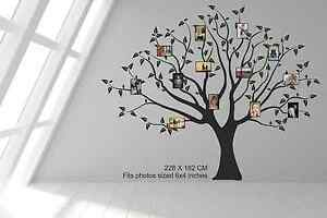 """Family Tree for 6"""" x 4"""" photos frames. Large Wall decal sticker art. Any colour"""