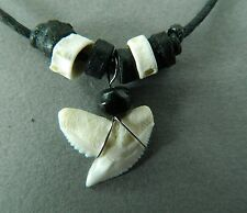 TIGER SHARK TOOTH NECKLACE REAL SHARKS TEETH MENS BOYS PENDANT 1 to 1.5cm long