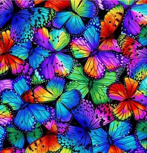 Fabric Butterfly Magic Wings Full Neon Cotton TIMELESS TREASURES1/4 Yard 8531