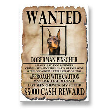 Doberman Pinscher Wanted Poster Fridge Magnet No 2 Dog