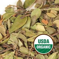 Uva Ursi Leaf - ORGANIC (Arctostaphylos uva ursi) - FREE SHIPPING 1 oz to 1 lb
