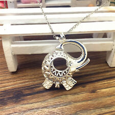 Hot Perfume Fragrance Essential Oil Aromatherapy Diffuser Locket Necklace WT59
