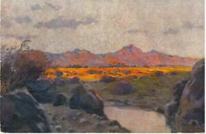 DSWA German South West Africa NAMIBIA Colonial Landscape Colour PC c1910s