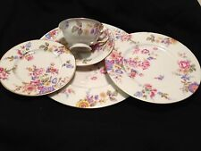 SERVICE FOR 4 - 5 PIECE SETTING OF CASTLETON CHINA IN THE SUNNYBROOKE  PATTERN