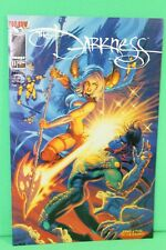 The Darkness #11 Greg & Tim Hildebrandt Cover Comic Image Comics F/F+