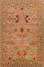 Floral Traditional Oriental Area Rug Wool Hand-tufted Home Decor 9'x12' Carpet