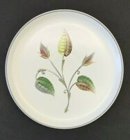 "Denby Spring 10.25"" Dinner Plate Hand-Painted England signed Albert College MCM"