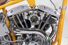 SHOVELHEAD ottone doppio OLIO KIT LINEA HARLEY FL x 1966-84 BOBBER CHOPPER