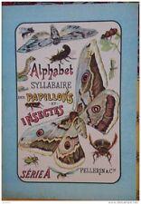 ALPHABET SYLLABAIRE DES PAPILLONS ET INSECTES. Série A. images épinal