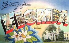 Vintage Postcard of Greetings from Florida 72849 1946