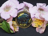 Real Butterfly Wing Pendent 40mm Alpine Black Swallow Tail Papilio Maackii