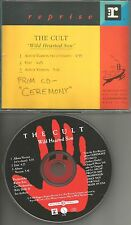 Ian Astbury THE CULT Wild Hearted Son w/ 2 RARE version PROMO DJ CD single 1991