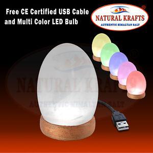 Salt USB Lamp Egg Shape Light with LED Bulb and USB Cable Desk USB Light