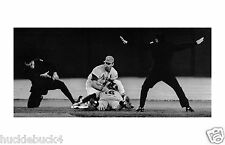 """MIKE SHANNON in action St Louis Cardinals """"Conflicted Umps"""" Photo VERY RARE!"""