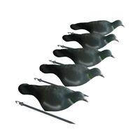 5 pcs Hunting Pigeon Decoy Shell Realistic Painting Dove Decoy With Stick Pegs