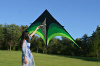Delta Kite for Kids and Adults Single Line Easy To Fly Kite with 30M Kite Line