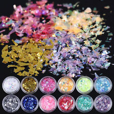 12 Colors Lot Nail Art Iced Mylar Powder Decals Acrylic Gel Tips Decoration Set