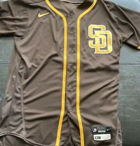San Diego Padres 2020 Game Issued Austin Adams Batting Practice Jersey