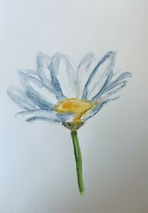 """Original Watercolour Painting Single White Daisy A4 8x12""""By D Coleman"""