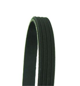 Serpentine Belt-LX, Coupe Cadna 338K4