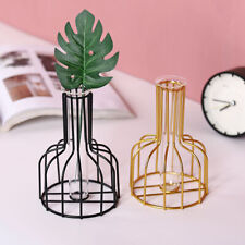 Glass Tube Flower Vase Hydroponic Pot Plant Terrarium Container Stand Holder