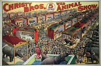 Circus, Clown, Side Shows, Posters, vintage photo reproduction High quality, 107