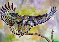 Beautiful oil painting Raptor Hawk Bird, animal, realism must see