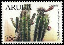 """ARUBA 173 - Native Cacti """"Cephalocereus languinosus"""" (pb18879)"""