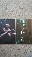 ANGEL AFTER THE FALL #19 & 20 set of both 1:10 RETAILER  VIRGIN INCENTIVE COVERS