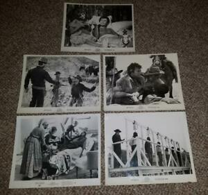 5 - CLINT EASTWOOD LOBBY CARDS - 4 HANG 'EM HIGH & 1 THE BEGUILED - 8x10 B&W