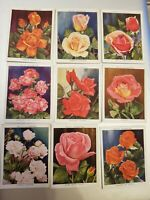 Roses (1936) Wills Cigarette Cards - Large Cards - Buy 2 & Save