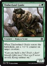 4x Timberland Guide  NM Iconic Masters MTG Green Common