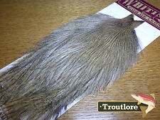 WHITING FARMS COQ DE LEON ROOSTER CAPE MEDIUM PARDO NEW FLYTYING FEATHERS