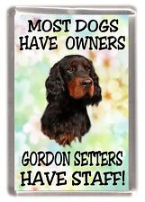 "Gordon Setter Dog Fridge Magnet  ""..... Gordon Setters Have Staff!"" by Starprint"