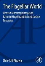 The Flagellar World : Electron Microscopic Images of Bacterial Flagella and...