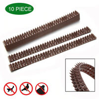 10Pcs Anti Bird Thorn Fence Wall Spike Repellent Nail Deterrent Tool Defender~
