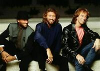 Art print poster , canvas Musical Group the Bee Gees