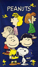 JAPANESE Noren Curtain  PEANUTS SNOOPY NEW Oh!Friends 85x150cmn MADE IN JAPAN