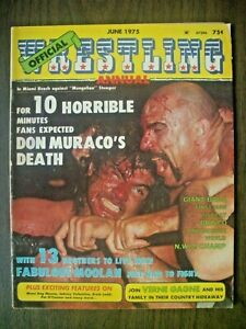 OFFICIAL WRESTLING ANNUAL 6/75-BABA OVER BRISCO-JAPAN! MIL-IWA CHAMP! VALENTINE!