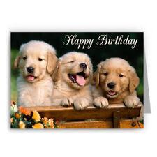 Golden Retriever Puppies Birthday Card - Dog