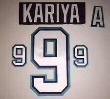 Anaheim Mighty Ducks Jersey Lettering Kit Any Name/Number