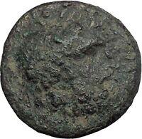 TERMESSOS MAJOR in PISIDIA 51BC Zeus Horse Authentic Ancient Greek Coin i50368