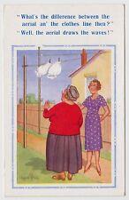 POSTCARD - Donald McGill comic, aerial & underwear theme, knickers drawers #1540
