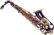 Sassofono Sax Alto Contralto Professionale KARL GLASER Viola CUSTODIA Accessori