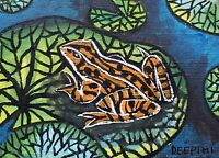 ACEO original miniature painting Ink pen & Watercolor Art - Mr.Frog in the Pond