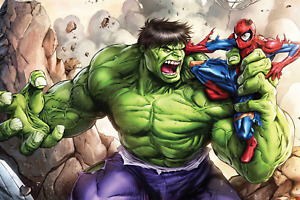 The Hulk vs Spider-Man Poster 24x36 Inches